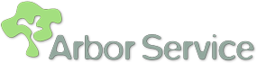 Lavori in quota – Arbor Service